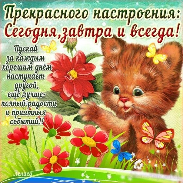 http://cs620517.vk.me/v620517955/ca8b/eAoi44fvzv8.jpg