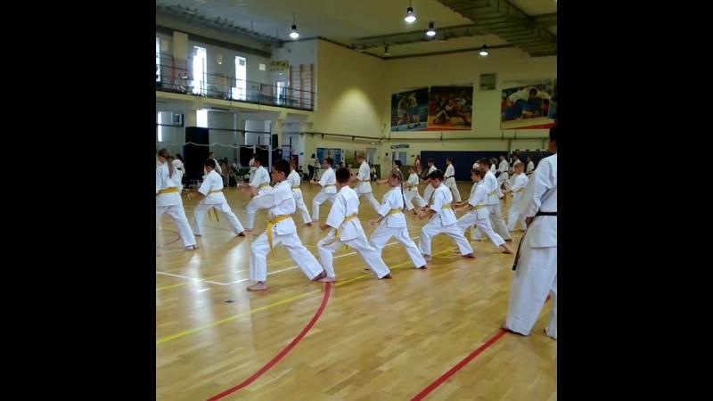 Экзамен по карате на 5кю кекушин каратэдети спорт kyokushinkai Karate kyokushinkarate