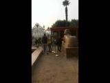 В КАИРЕ музей пирамиды