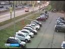 Лошади стали причиной ДТП в Ярославле