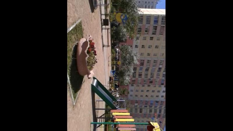 Video-2018-08-04-16-05-35