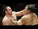 ტოჩინოშინის 15-ვე ბრძოლა მარტის ბაშოზე | Tochinoshin all 15 bouts on