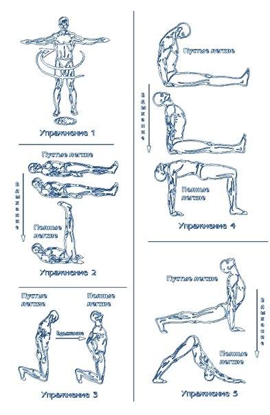 Пять упражнений на гибкость и
