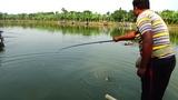 Pretty Fishing Videos By Arif In Village Pond