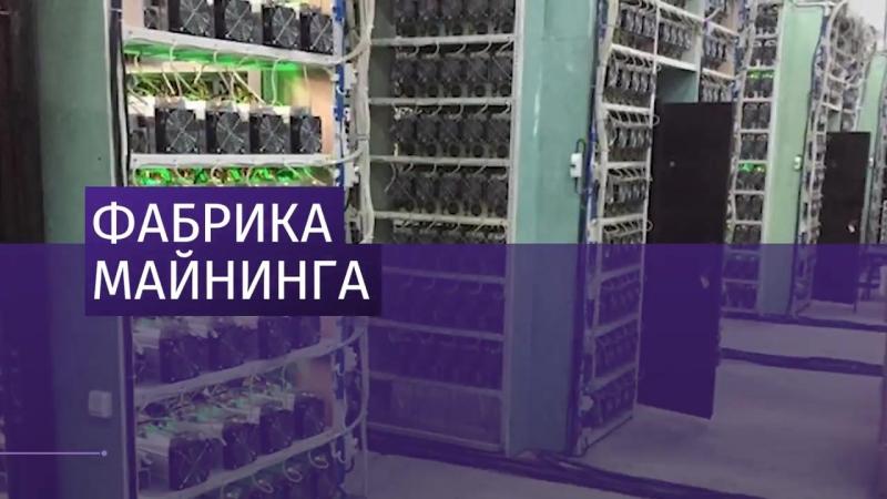 Энергетики обнаружили в Оренбурге цех по добыче криптовалюты.