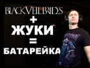 Black Veil Brides Жуки = БАТАРЕЙКА