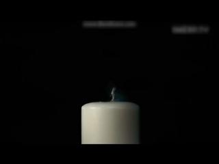 Замедленная съёмка попадания пули в разные предметы