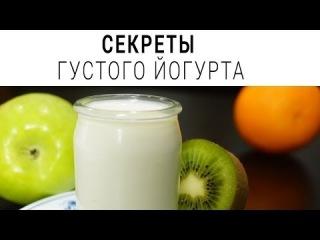 Как сделать густой йогурт. Рецепт. Греческий йогурт  в домашних условиях
