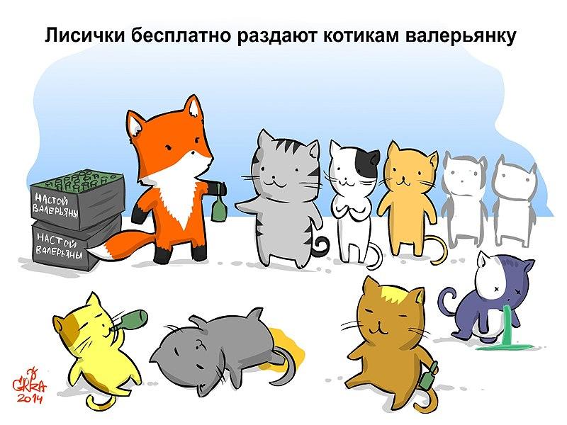 коты против лис скачать торрент - фото 8