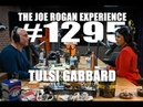Joe Rogan Experience #1295 - Tulsi Gabbard