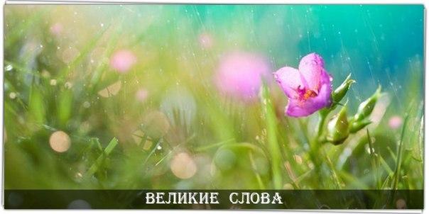 Фото -23170931