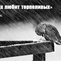 Айгерим Дусикенова