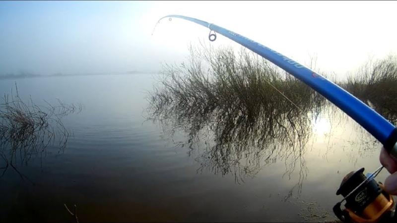Interesting Fishing Video. Woke up early caught the fish.