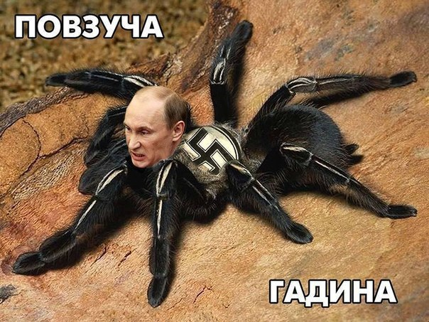 """Террористы на границе с Россией  взяли под контроль пункт пропуска """"Должанский"""", - СМИ - Цензор.НЕТ 8460"""
