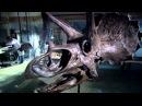 Сражения Динозавров 1 Сумевшие выжить