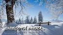 Sniegotā diena dzied grupa Zeļļi