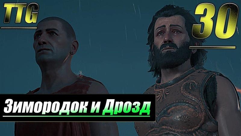 Прохождение Assassin's Creed Odyssey — Часть 30: Зимородок и Дрозд