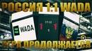 Россия 1:1 WADA: игра продолжается (Анна Сочина)