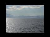 Море (ауд. Макулатура - 30 лет как мертв)
