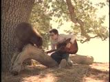 Weezer - Island In The Sun 2