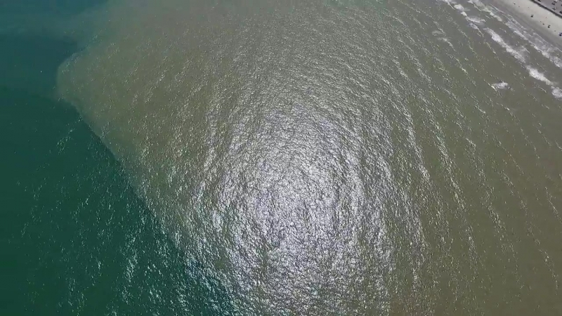 Looks like that blue water is coming back!! Can you spot the manta Ray