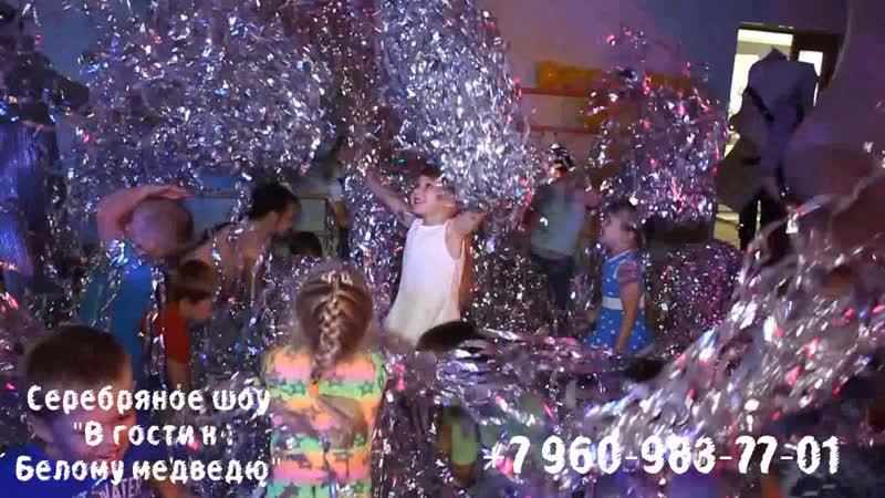 Серебряное шоу В гости к Белому медведю для детей 38-56-58
