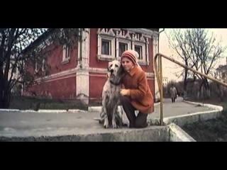 Белый Бим Черное ухо 2 серия, 1976, смотреть онлайн, советское кино, русский фильм, СССР