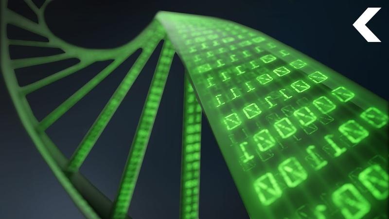 ДНК - это квантовый биокомпьютер. Режиссер Царёва