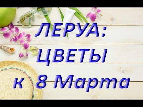 ЛЕРУА ЦВЕТЫ к 8 МАРТА,05.03.2019,ТЦ Космопорт,Самара.