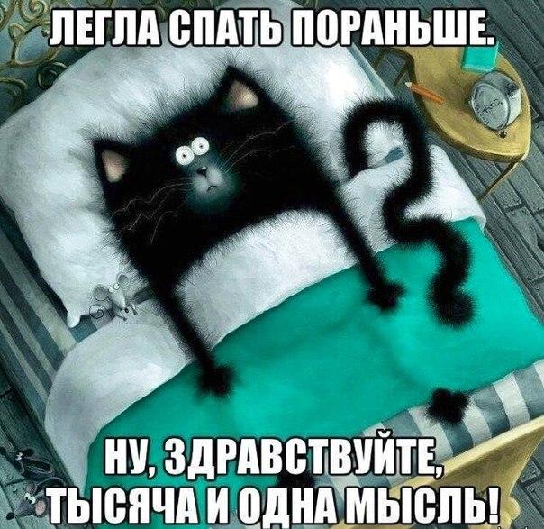 https://pp.vk.me/c617221/v617221563/10378/Vqni_fwb2DA.jpg