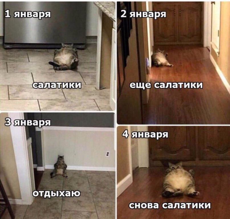 Наталия Бойцова |