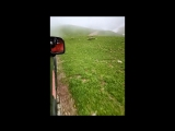 Дорога в облаках.
