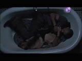 Я легенда (2007) Русский Трейлер