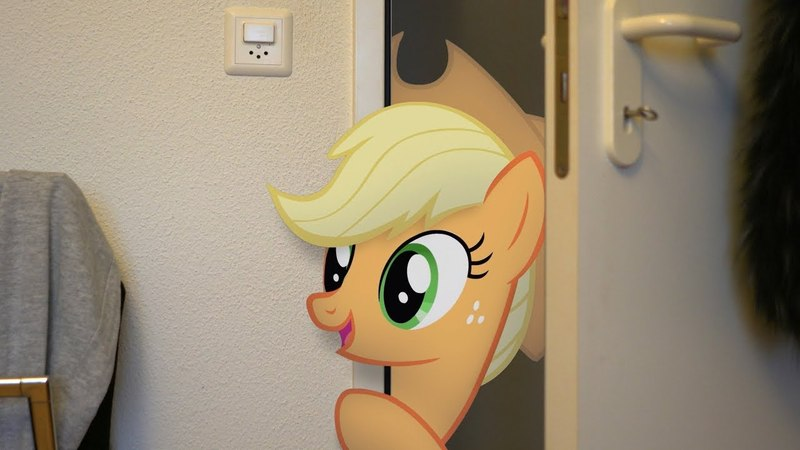 Applejack's Friendship Quest (MLP in real life)