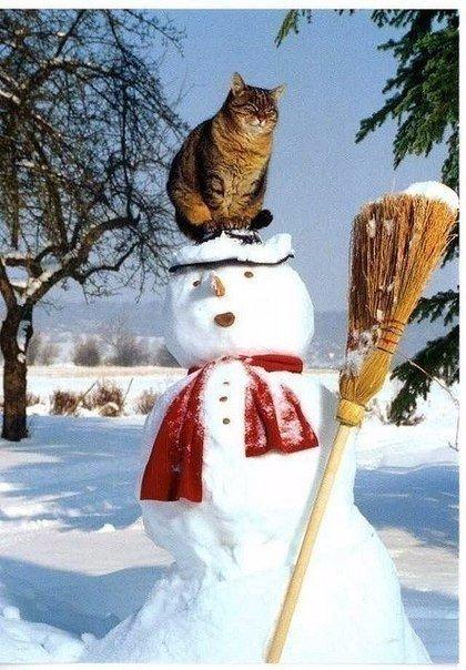 Вот такой у нас снеговик с утра получился))