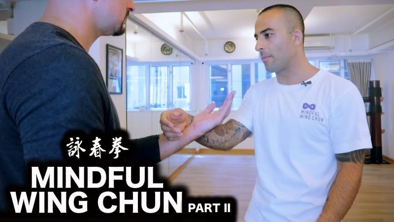 Mindful Wing Chun Sifu Nima King Part II 詠春拳