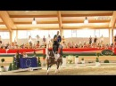 FEI European Vaulting Championships 2013 - Senior Squads Compulsory & Technical - Top 3