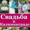 ✔ Свадьба в Калининграде. Главный информационный