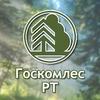 Государственный комитет по лесному хозяйству РТ