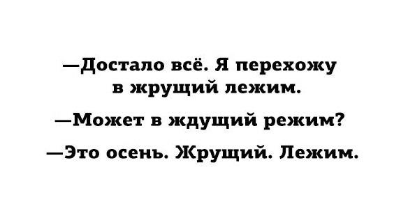 sZxIpEcmizI.jpg