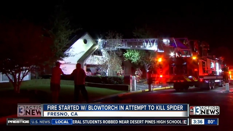 Blowtorch used to kill spiders may have started Fresno fire