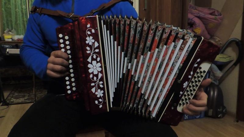 Проба Кировской гармони До диез