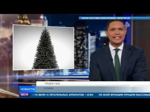 Европа может остаться без новогодних елок из-за глобального потепления