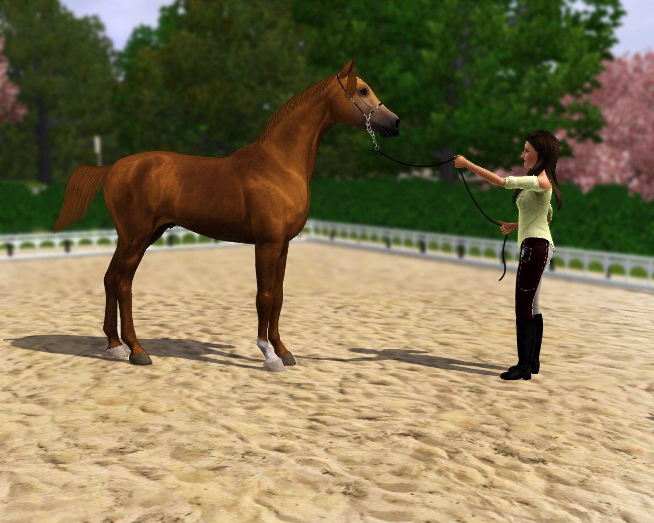 Регистрация лошадей в RHF 1.2 - Страница 6 1NGeZlAl8fA