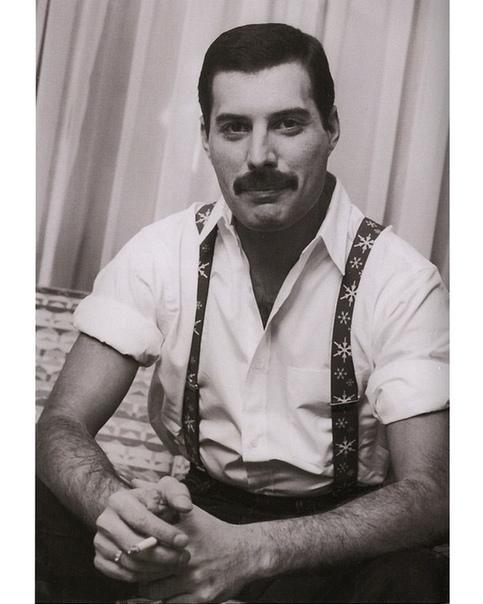 Талантливый красавец Фредди Меркьюри.