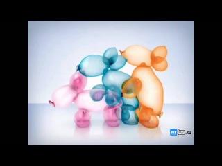 Самая глупая реклама - www.myboxs.ru