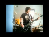 Sound Of The Sun by Silverstein Bass Cover