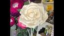 Ростовая роза для украшения из изолона. rose growth. large flowers