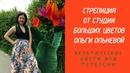 Стрелиция от СТУДИИ БОЛЬШИХ ЦВЕТОВ Ольги Ольневой. Экзотические цветы для фотозоны