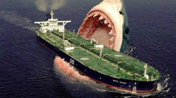 Подборка лучших фильмов про акул-убийц.